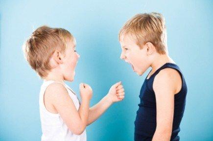 brigas irmãos