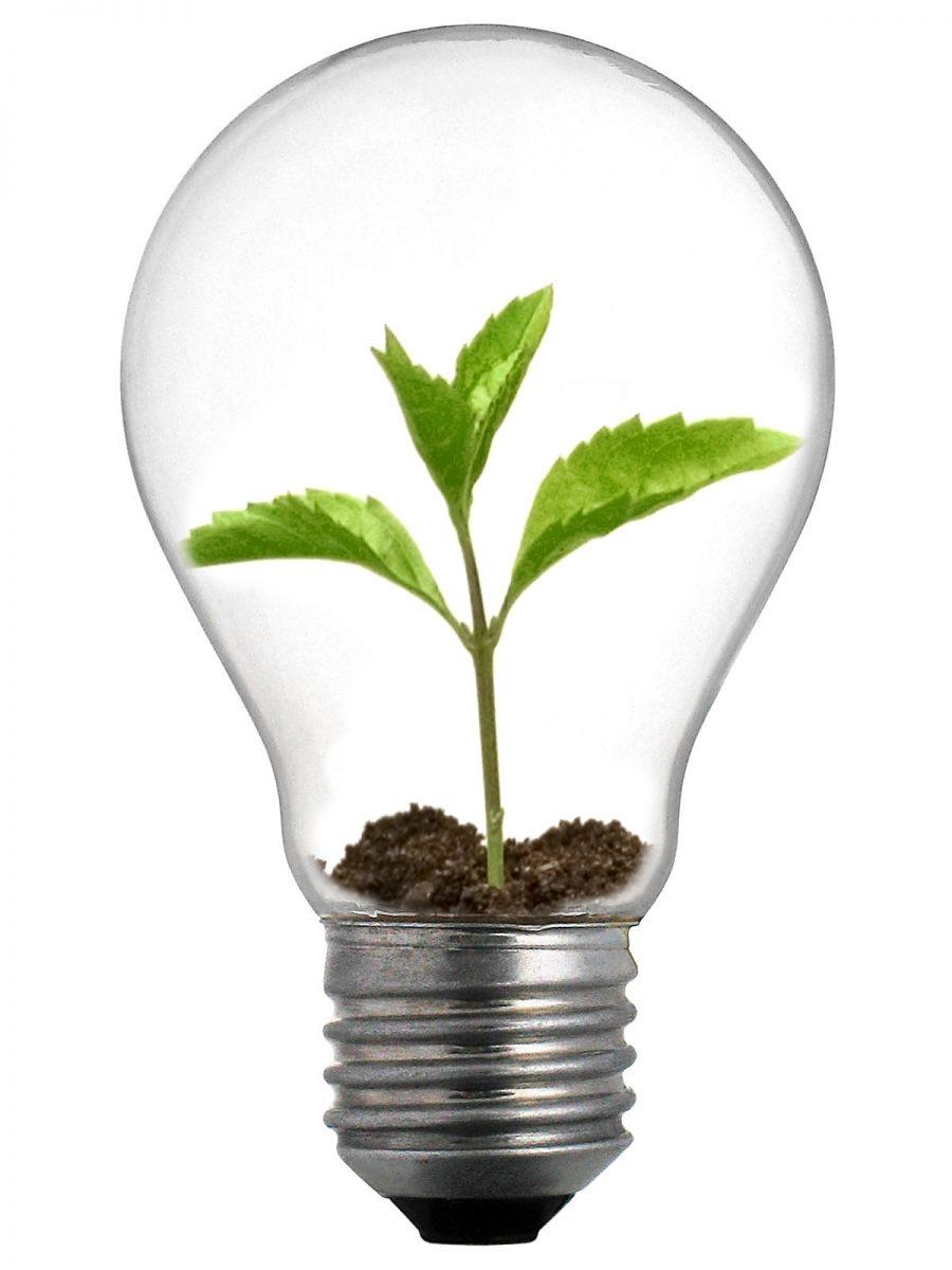 Eco-Innovation