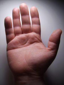 palma da mão
